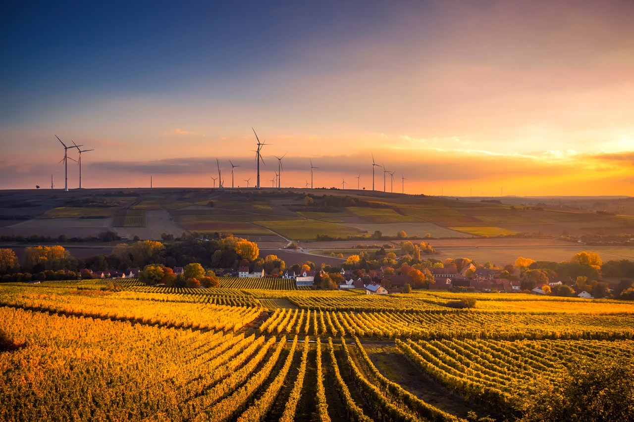 Environmental Technology Is Being Used to Save Our Planet